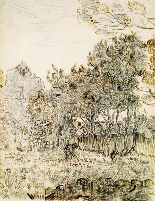 Pine Trees in the Garden of Clinic - by Vincent van Gogh