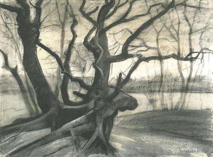 Study of a Tree, - by Vincent van Gogh
