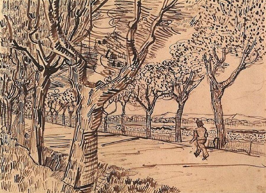 Van Gogh Drawings Trees The Road to Tarascon -...