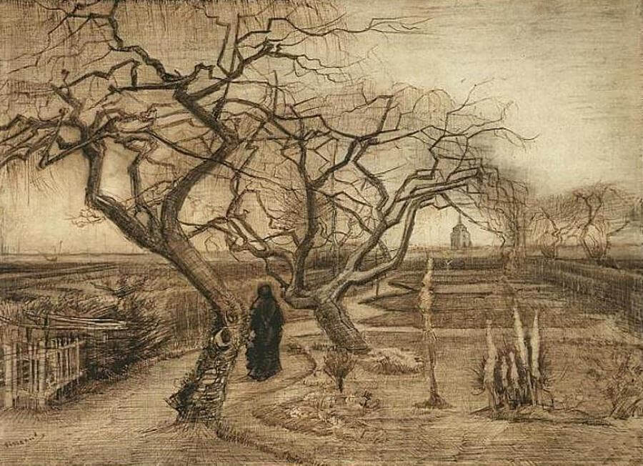 Van Gogh Drawings Trees Winter Garden - by Vin...