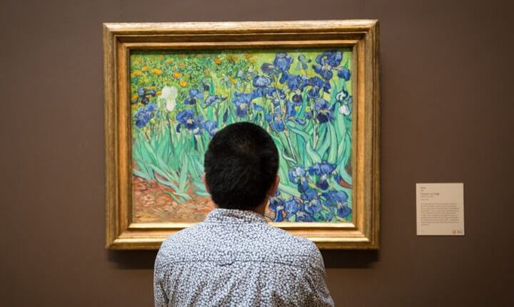 Van Gogh Irises Museum Photo
