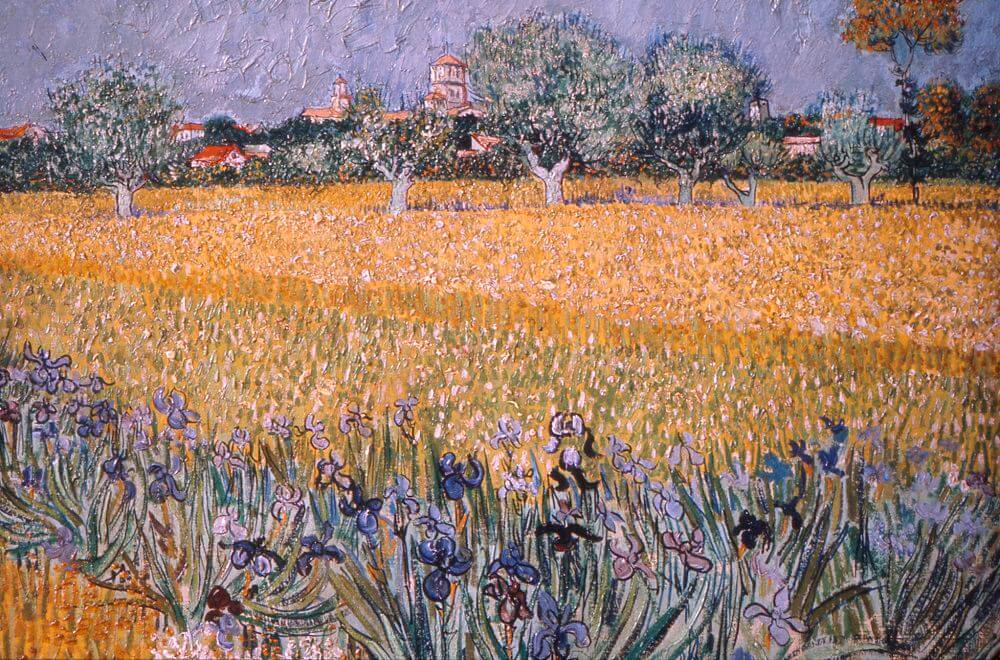 Field with Irises near Arles, 1888 by Vincent van Gogh