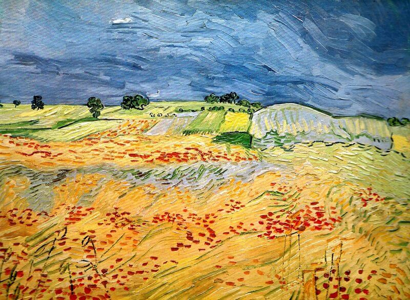 Fields with Blooming Poppies, 1890  by Vincent van Gogh