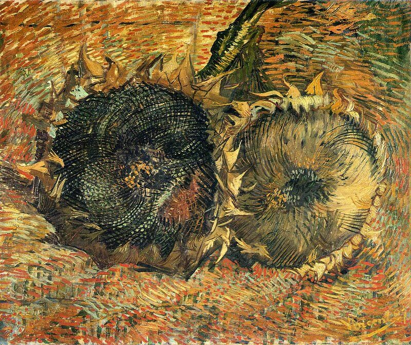 Still Life with Two Sunflowers, 1887 in Bern