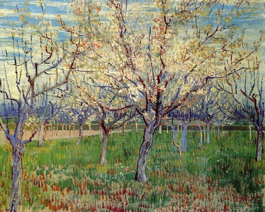 The Orchard, 1888 by Vincent Van Gogh