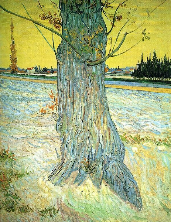 Trunk of an Old Yew Tree, 1888 by Vincent Van Gogh