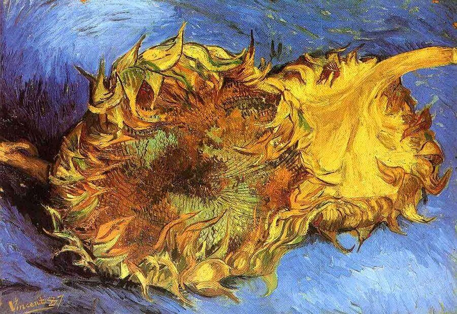 Two Cut Sunflowers, 1887 by Van Gogh